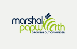 Marshal Papworth graduates help plant 24,000 tree seedlings in Ghana