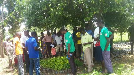 Marshal Papworth agriculture graduate trains over 1000 young Africans in under a year